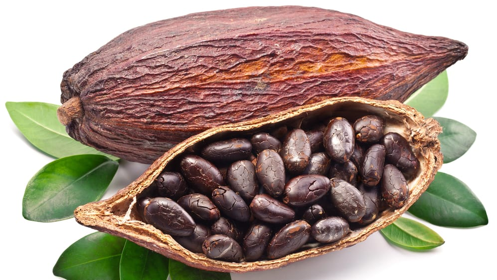 Cocoa Production, Imports and Exports by Country - Bontena