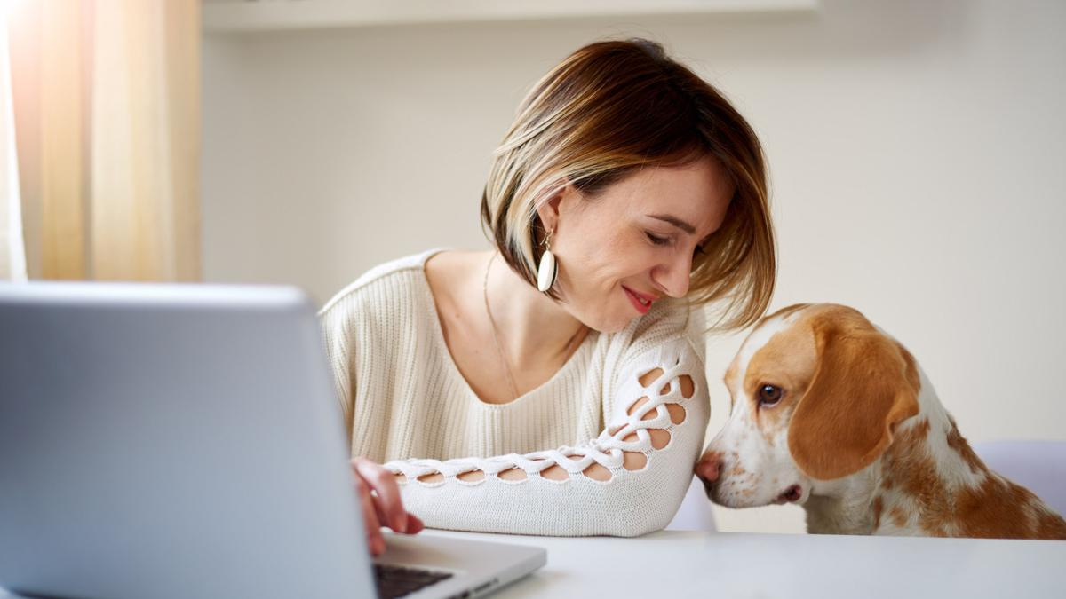 Pet Benefit Solutions now offers a complete set of programs for employees with pets and can be the single pet benefits vendor to HR departments nationwide.