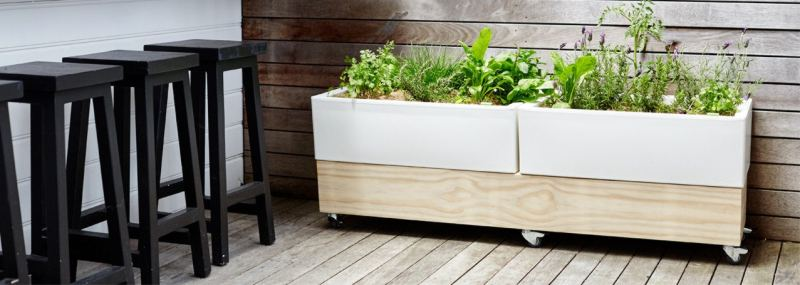 Glowpear Cafe Planter