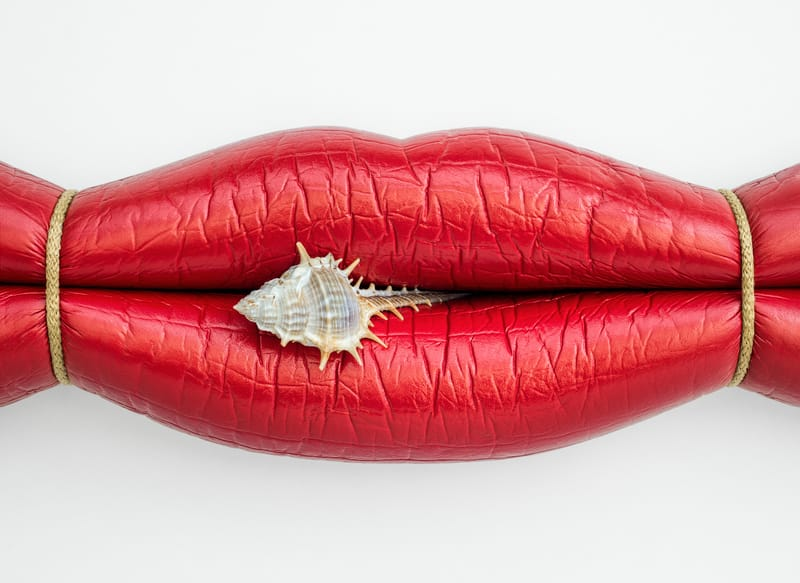 Surreal Lips - Photo by Jose Lai�o