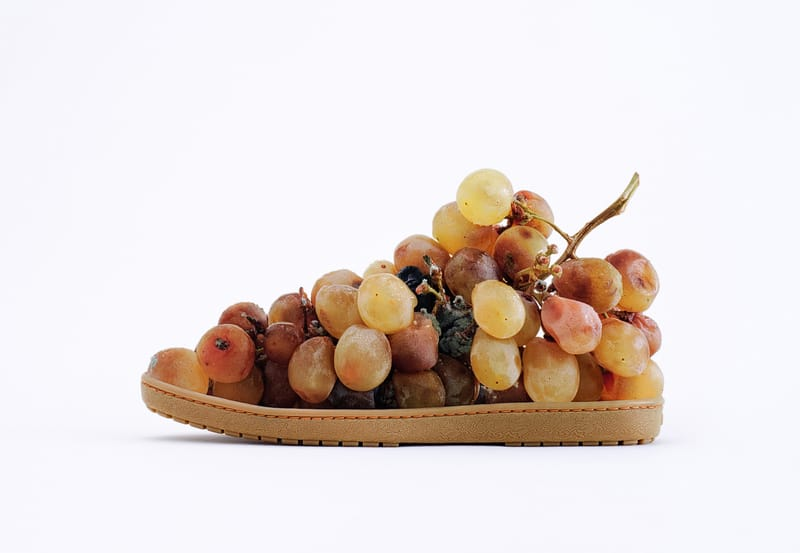 Grapes Shoe - Photo by Jose Lai�o